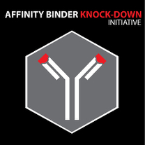 Affinity Binder Knock-Down